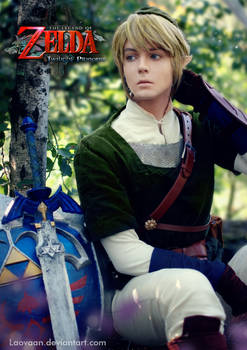 Link - Legend of Zelda: Twilight Princess
