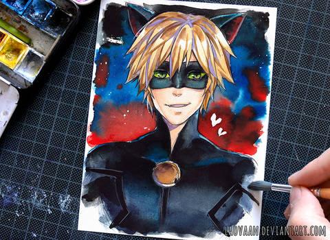 Cat Noir - Miraculous Ladybug