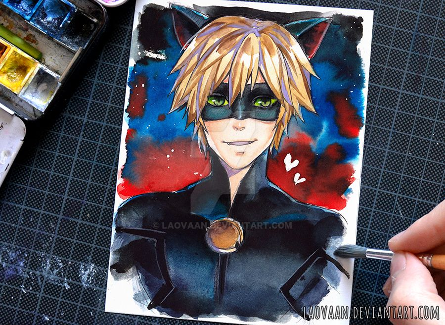 Cat Noir Miraculous Ladybug By Laovaan On Deviantart