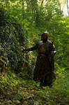 Elvish Amber guard on patrol 1