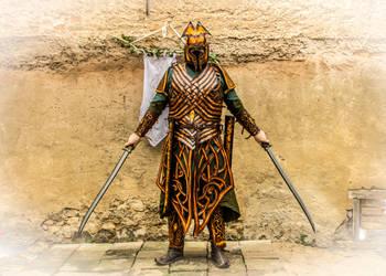 Elf leather armor - Mirkwood Amber guard