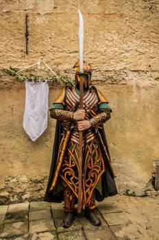 Elf leather armor - Mirkwood Amber guard spear