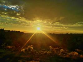 SunsetRestStop