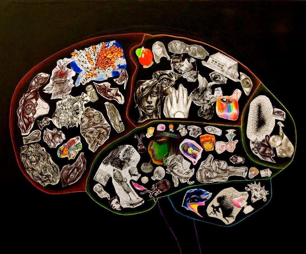 Anatomy Of An Artists Brain By Elleon12 On Deviantart