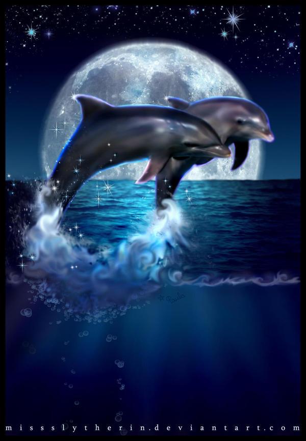 Dolphin's Dream by PaulaDarwinkel on deviantART