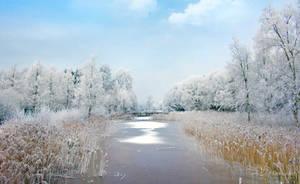 Winter by PaulaDarwinkel
