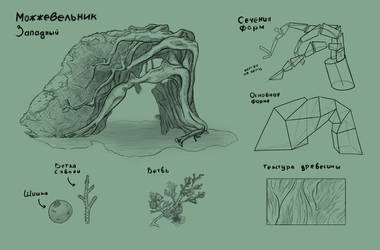 Juniper sketch