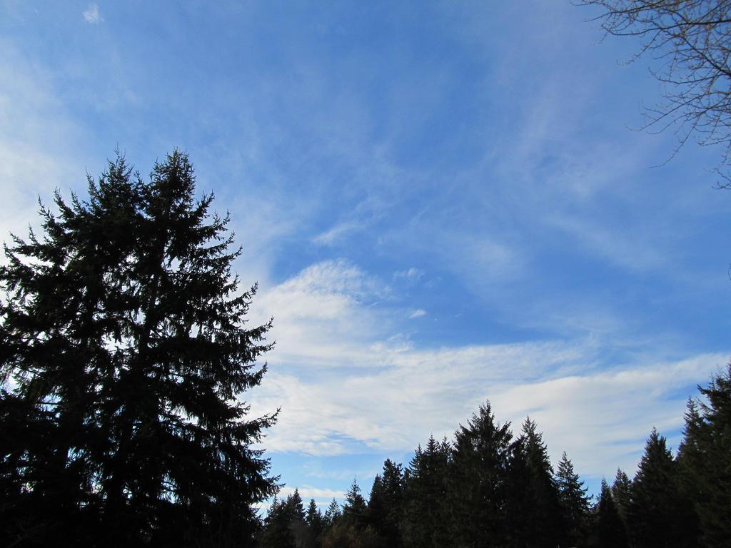 Sky by Kay--Cee