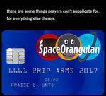 SpaceOrangutan