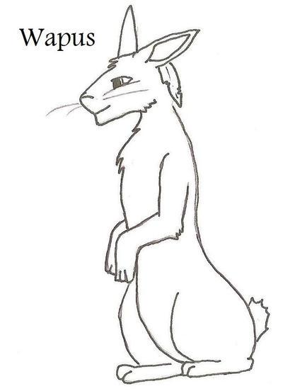 Wapus's Profile Picture