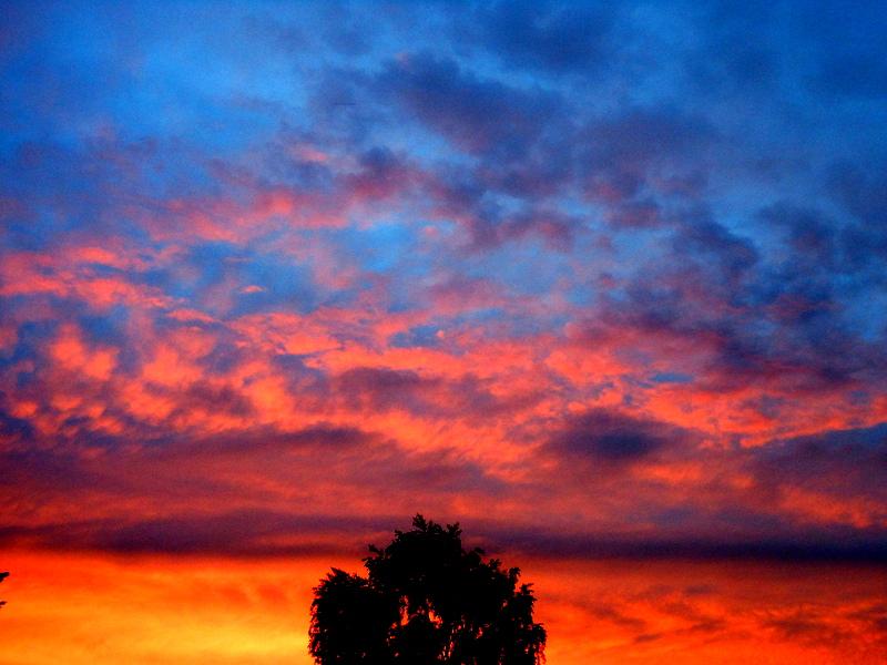 Fire In The Sky by ShawnaWalker23
