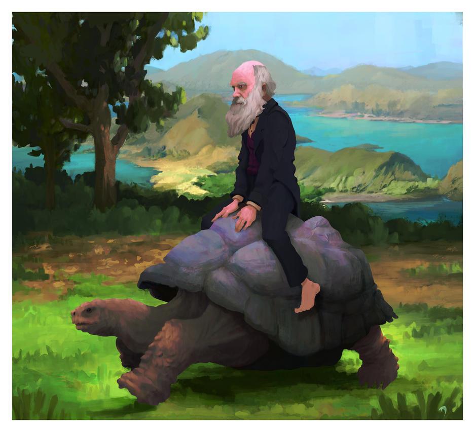 Darwin by Lovegrove