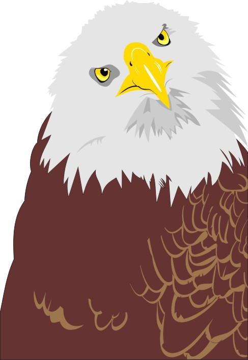 Eagle - Work in Progress