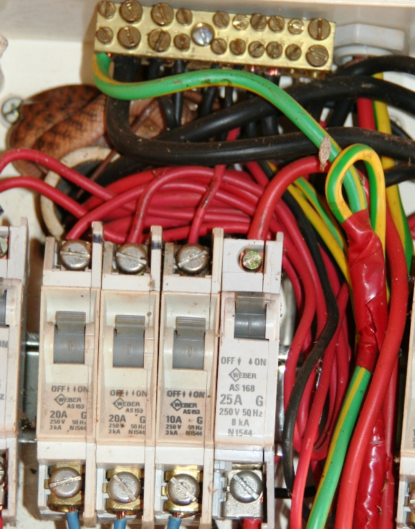 fuse box in garage snake in the nice warm fuse box in the garage by lesha on deviantart  snake in the nice warm fuse box in the