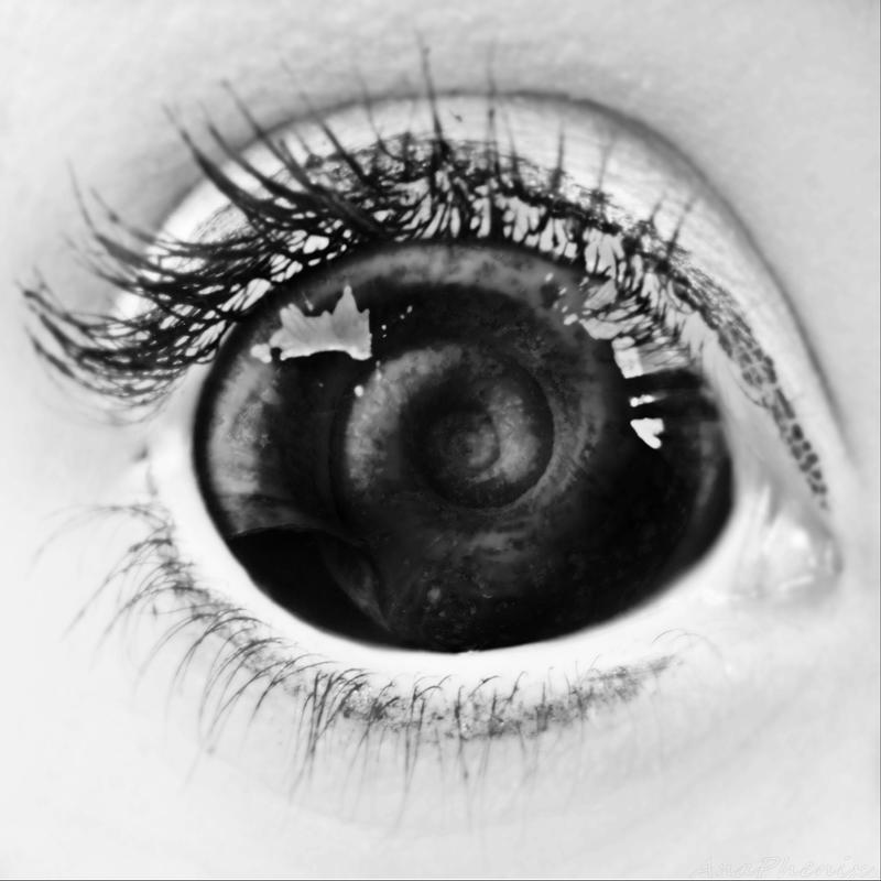 The World Trough an Eye by anaPhenix