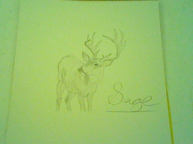 Deer Finished* by TheyCallMeSage