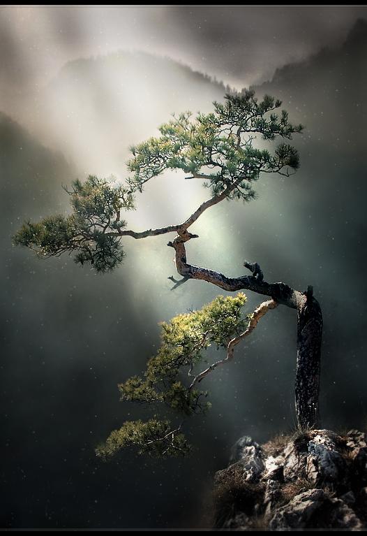 Grace_Like_Rain_by_MultiLockOn.png