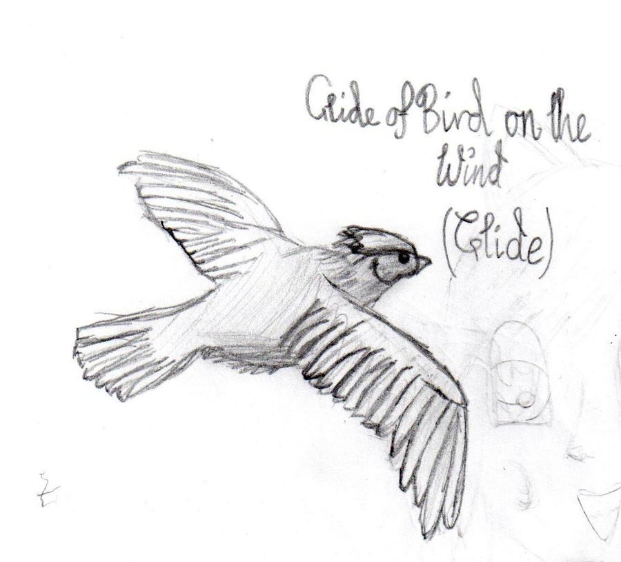 mah bird drawinginamousetrap on deviantart
