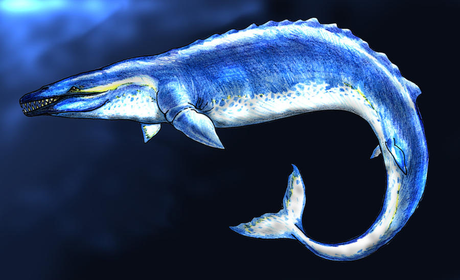 Basilosaurus | The World of Animals