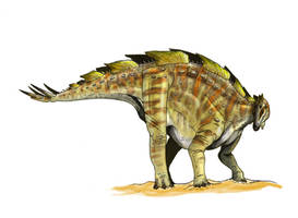Wuerhosaurus by Fafnirx