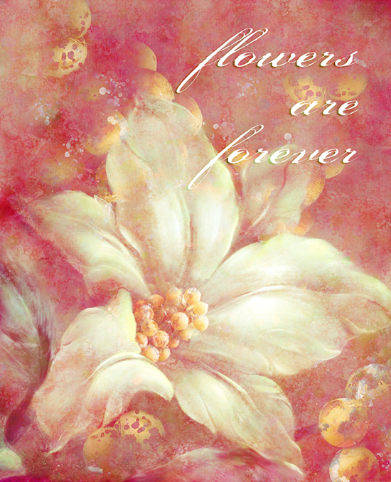 flowers-are-forever's Profile Picture