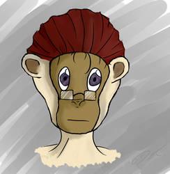Mr. Monkey by ShinuSunaipa