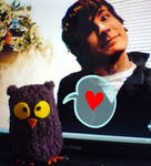 Mr Young and the Owl