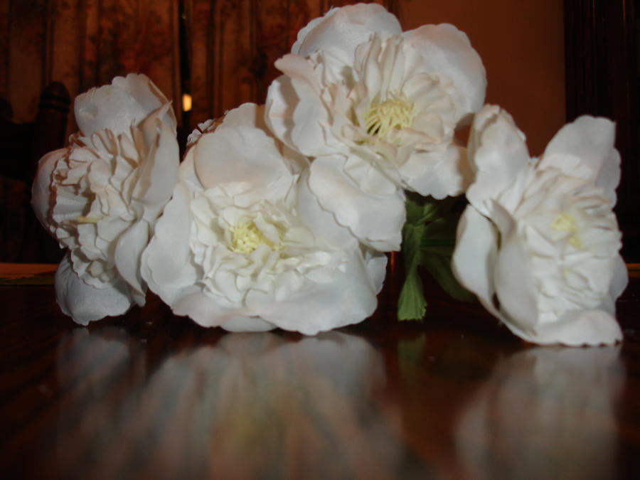 Blue Fire Rose White By Likes Pie