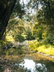 Cumberland River-1, Victoria