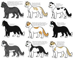 Realistic Cat Adopts - 10 Points (OPEN)