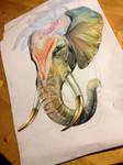 Elephant Tattoo M (Progress Pic)