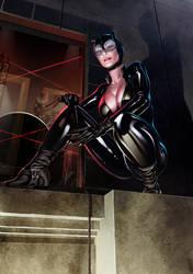 Catwoman Print PG-13 Version