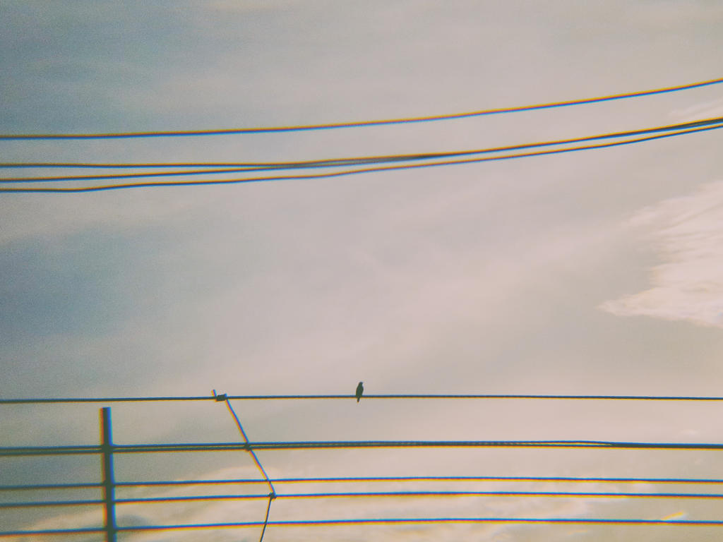alone by Ronaldwei