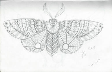 Zentangle moth