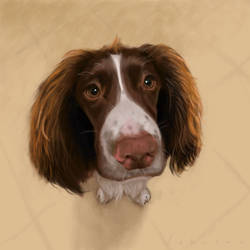 Alfie by drawmyface