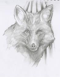 The Fox by Velbette