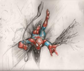 Spiderman by Velbette