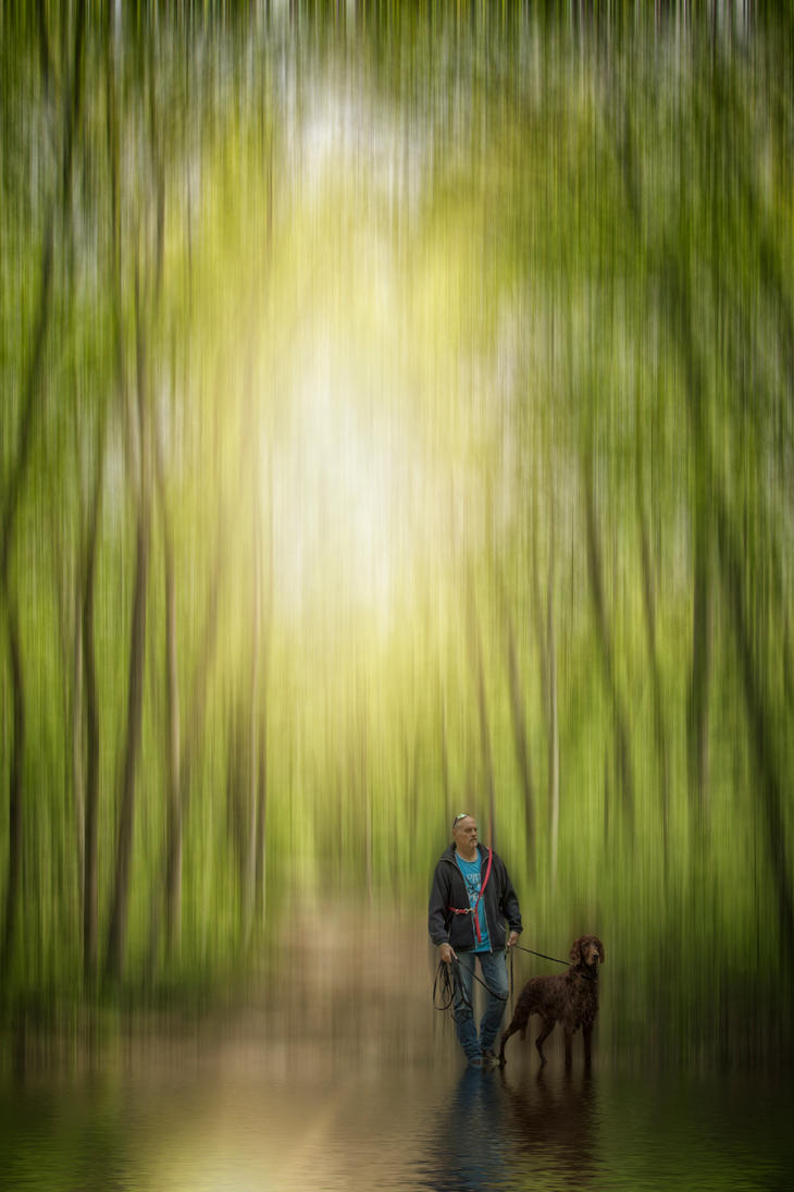 Mystery woods by GitteKoeppel