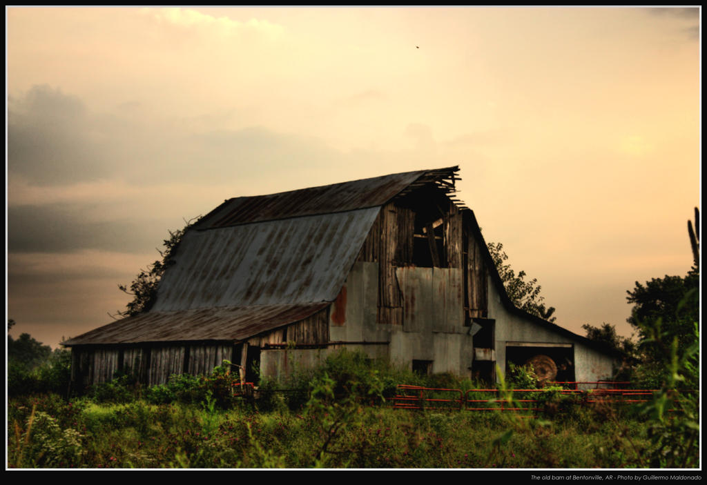 The old Barn by maldonadoga