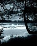 'Moonlit' pond