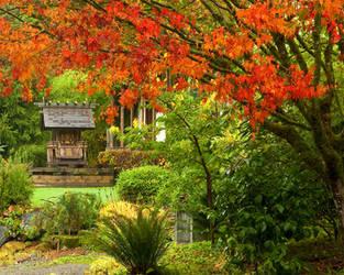 Shinto shrine in autumn by LarryRaisch