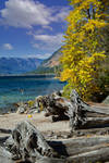 Lake Wenatchee 2021