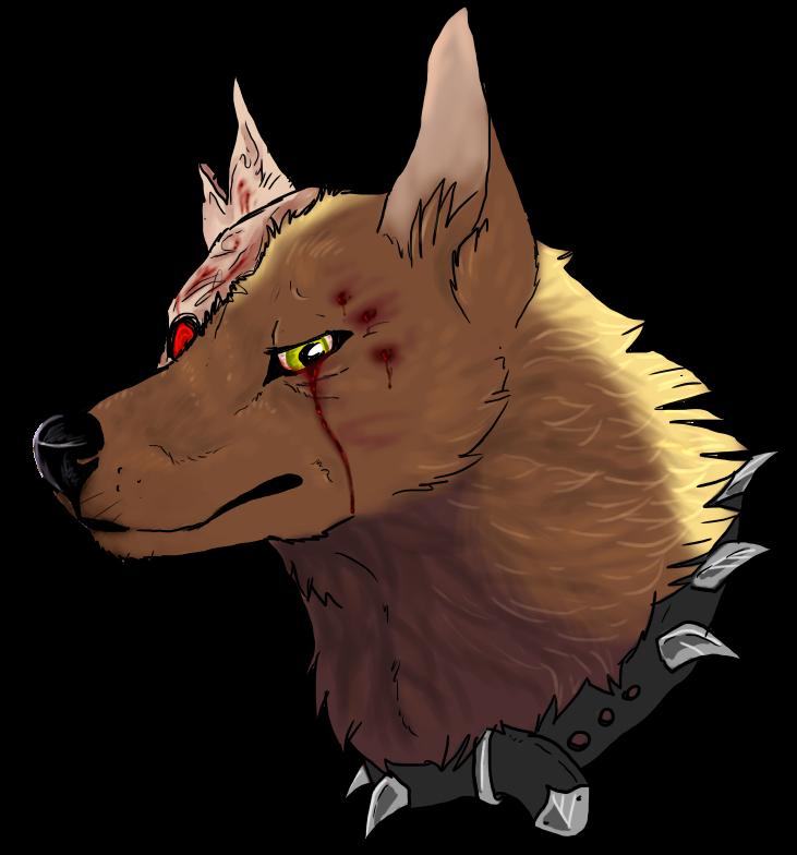 Angry Dog Ears