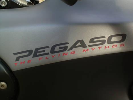 A detail of the Pegaso