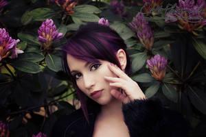Purple Dream by Estelle-Photographie