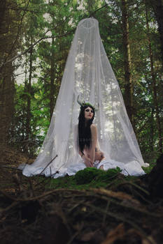 Lady of the woods 1