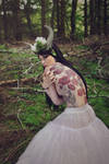 Lady of the woods 2