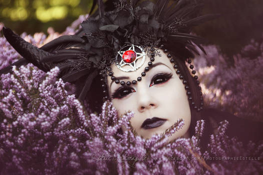 Crown of darkness 1