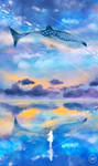 the ocean sky.