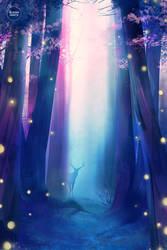 secret forest.